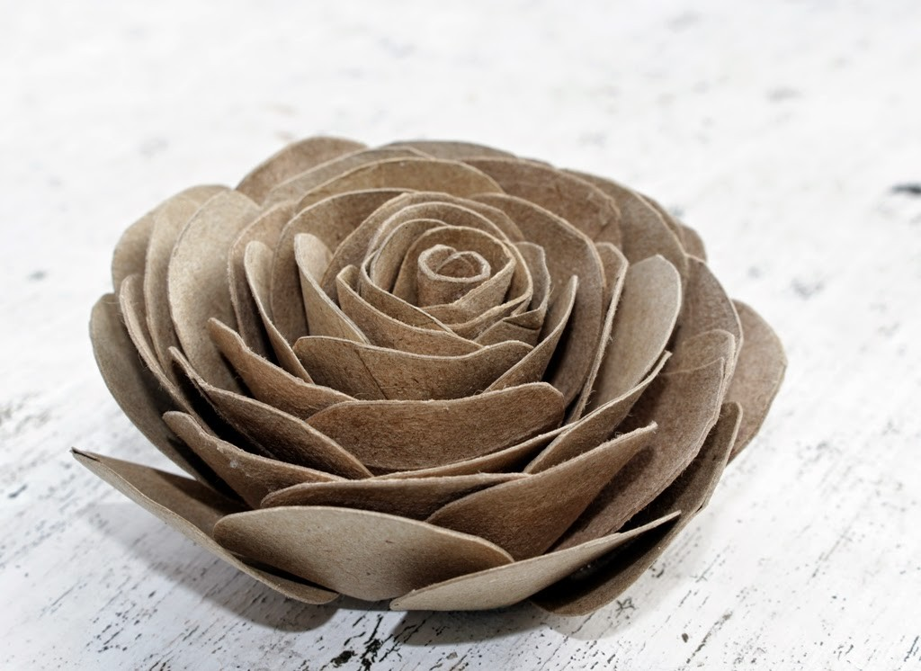 cabbage-cardboard-roses