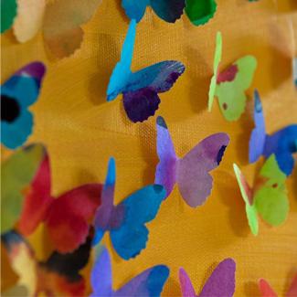 sb butterflies